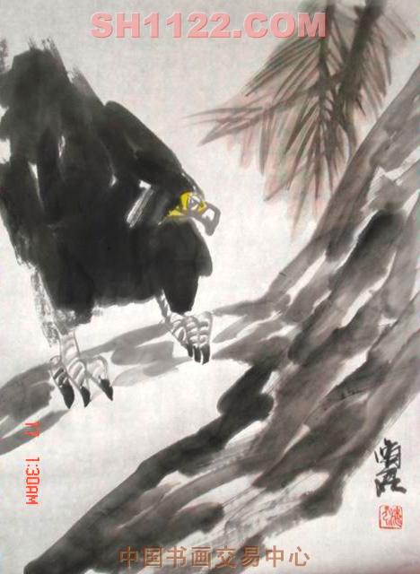 中国人气美女杜菁菁最大
